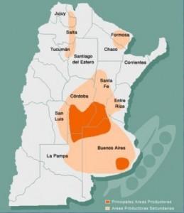 Área de cultivo de maiz con genes de resistencia a antibioticos