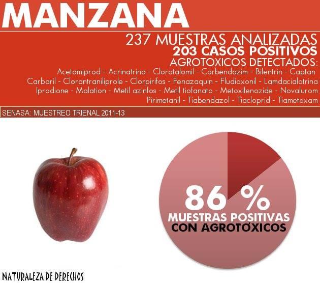 impacto en la salud de los residuos de agrotóxicos en frutas y